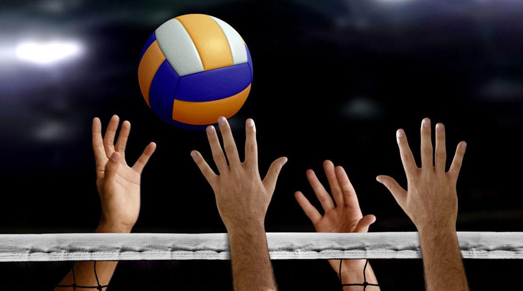 DMAX et le Spacer's Toulouse Volley…